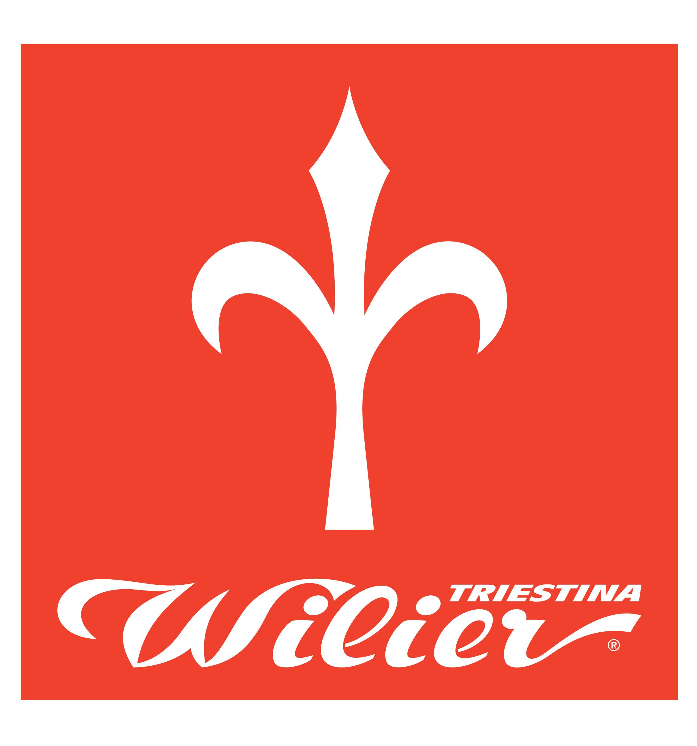 Bici da corsa, gravel, mtb, e-bike a pedalata assistita del marchio leader mondiale Wilier Triestina.